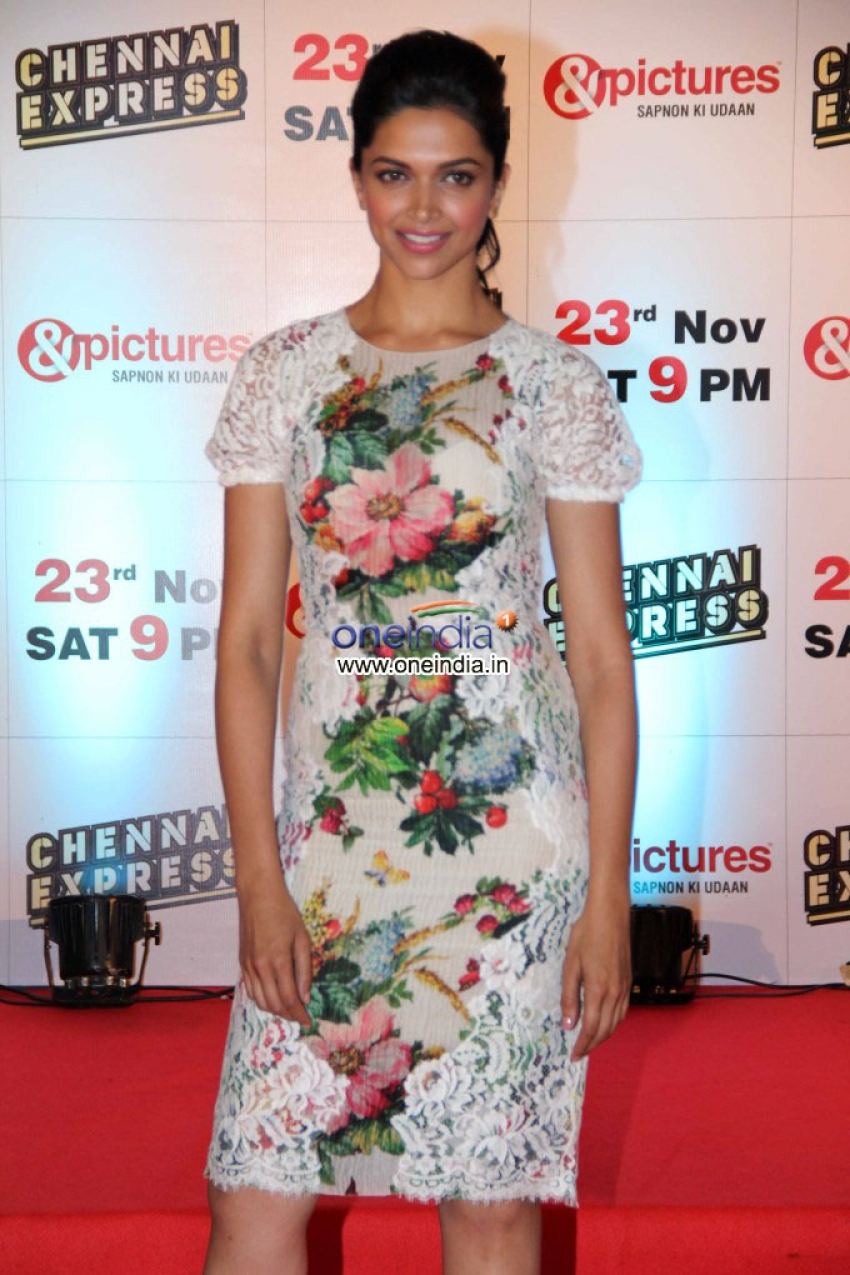 Zee TV's success party for film Chennai Express Photos
