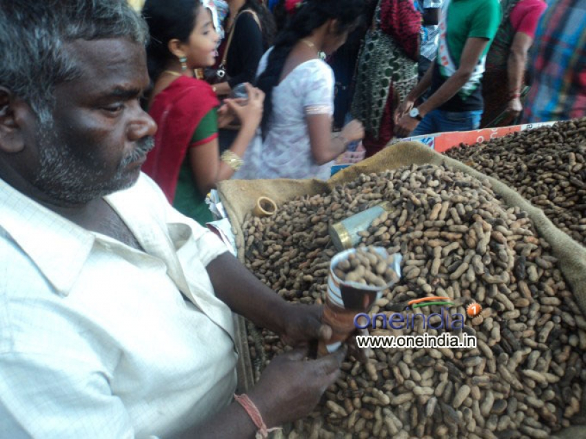 Kadlekai Parishe (Groundnut Fair) 2013 in Bangalore Photos