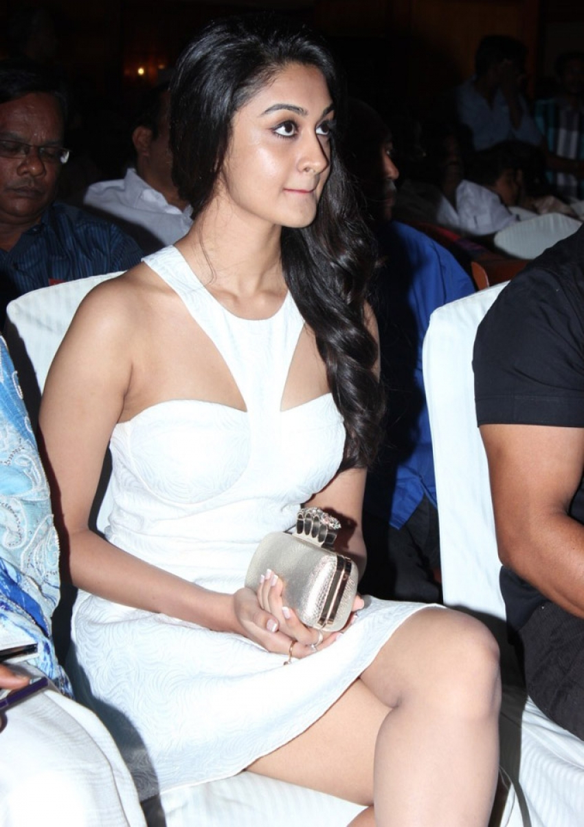 V4 Entertainers Film Awards 2014 Photos