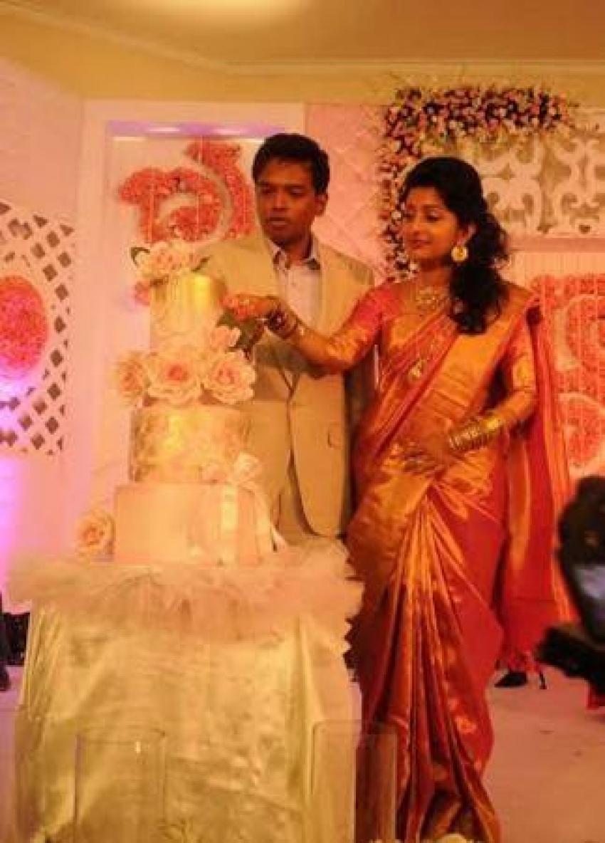 Meera Jasmine Wedding Reception Photos