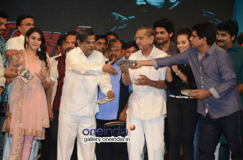 Prabhanjanam Audio Launch Photos