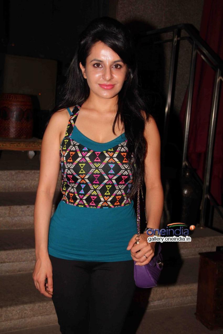 Success party of TV serial Balika Vadhu Photos