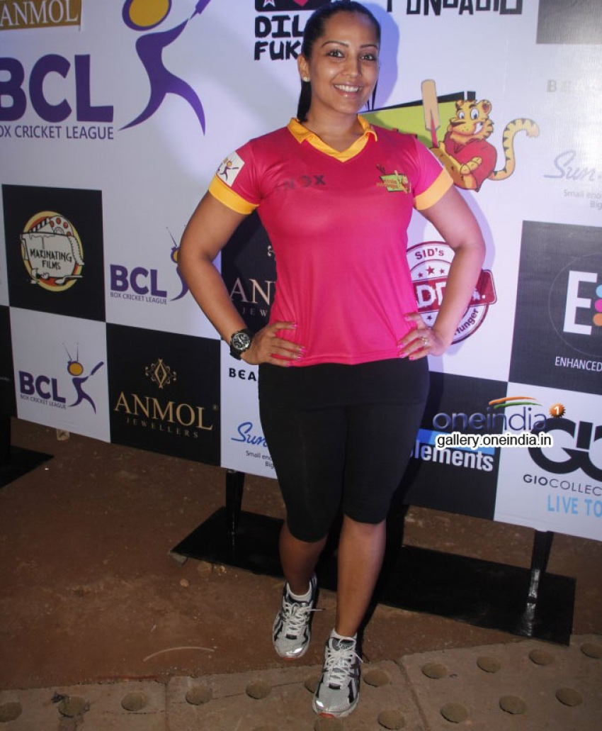 Box Cricket League 2014 Inaugral Match Photos