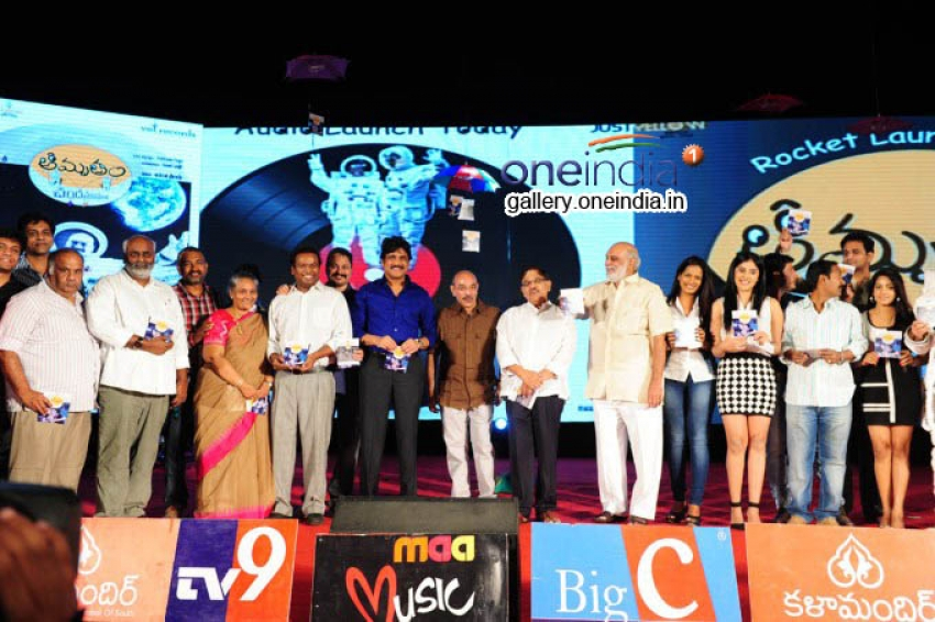 Chandamamlo Amrutam Audio Release Function Photos