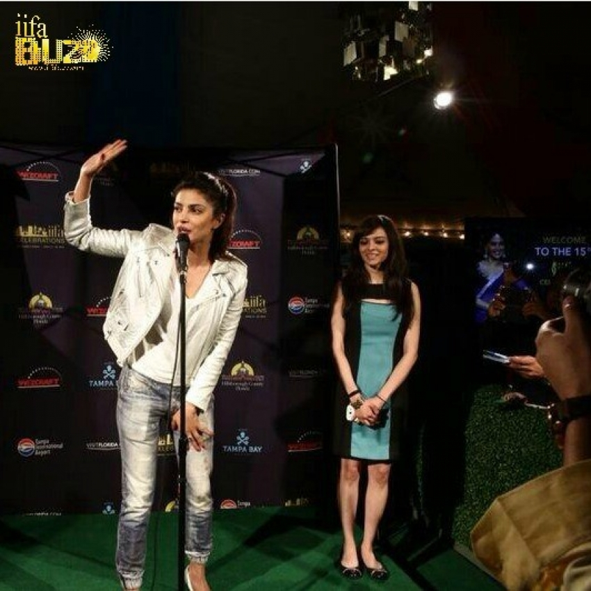 Celebrities stomp for IIFA awards 2014, Florida Photos