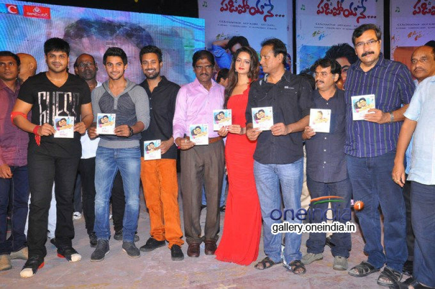 Pyar Mein Padipoyane Audio Launch Photos