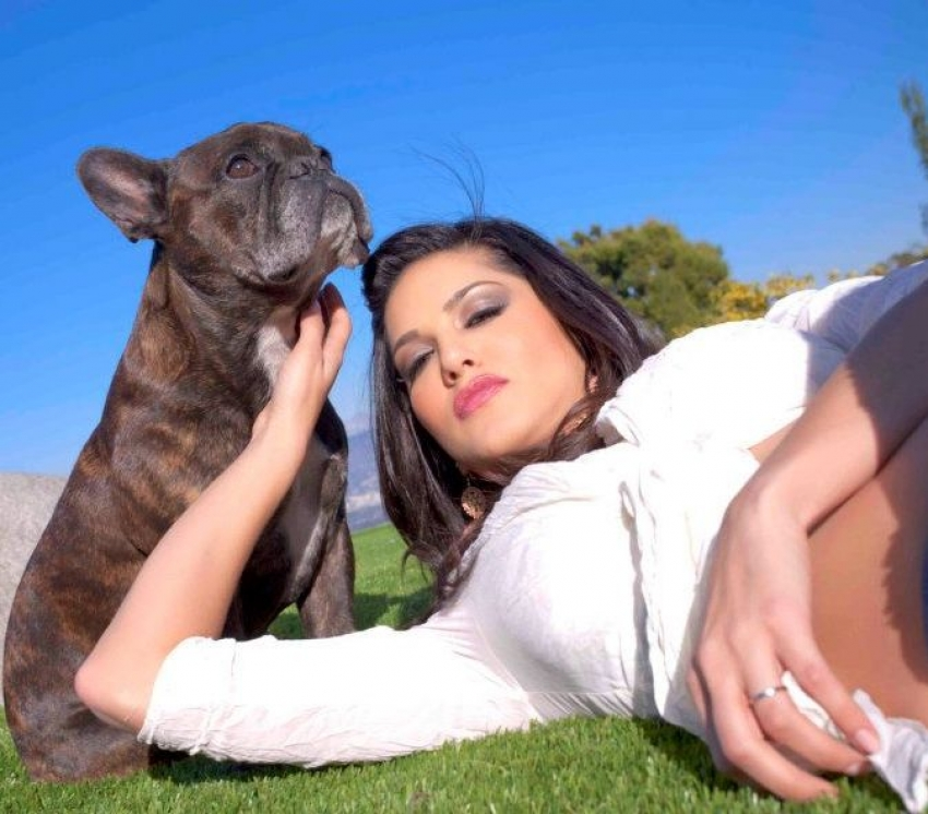 Celebs Selfies With Their Adorable Pets Photos
