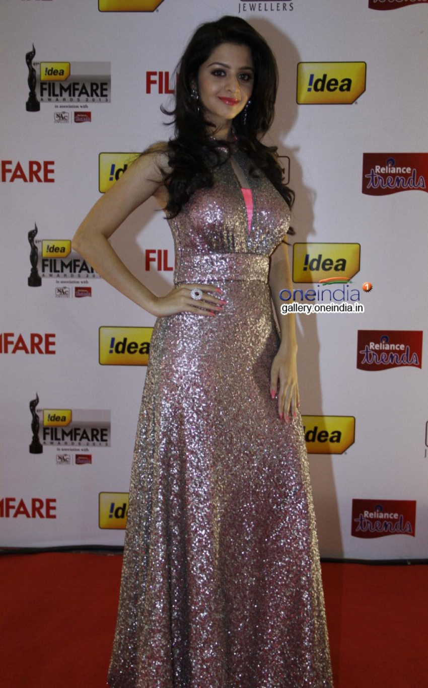 Idea Filmfare Awards 2014 South Photos