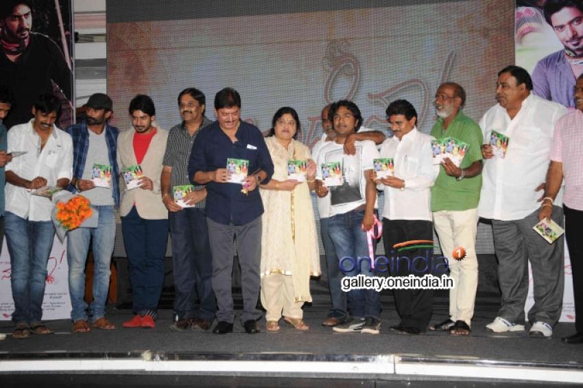 Neenade Naa Movie Audio Release Photos