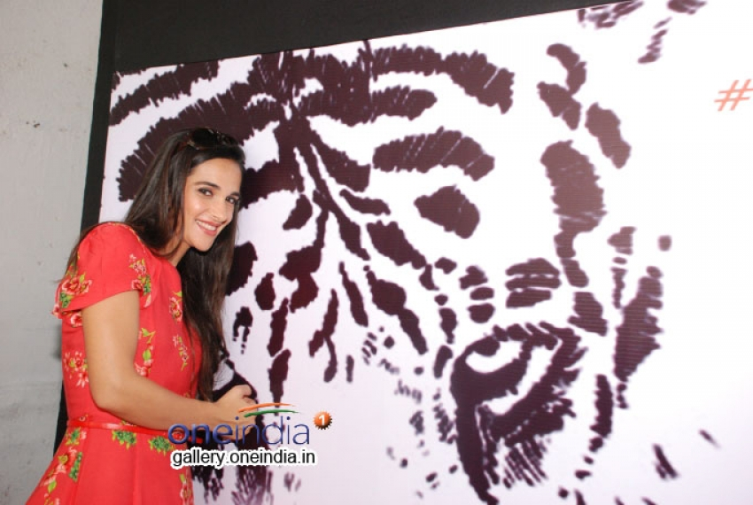 Tara Sharma at NDTV's Save Our Tigers Campaign Photos