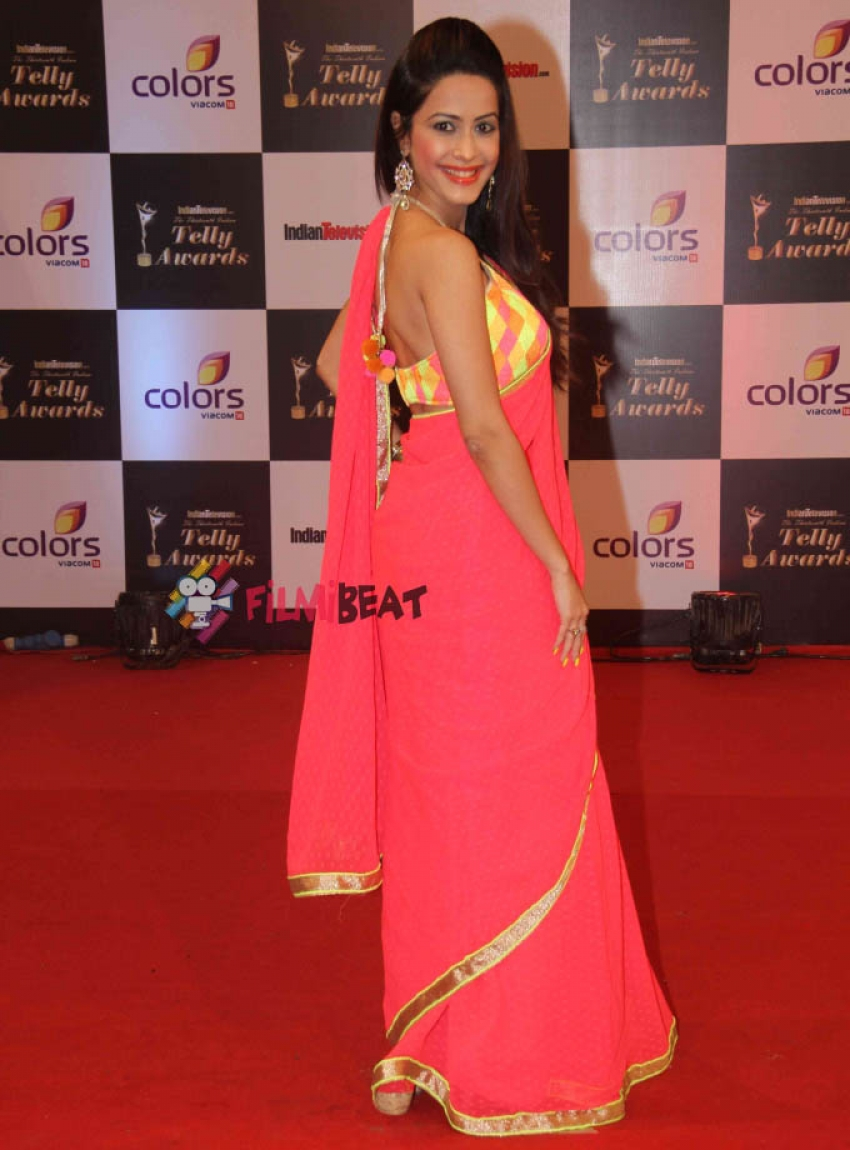 13th Indian Telly Awards 2014 Photos