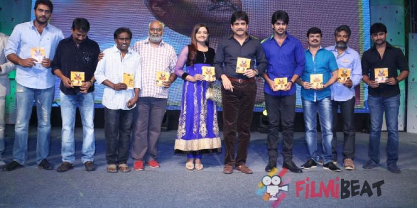 Dikkulu Chudaku Ramayya Audio Launch Photos