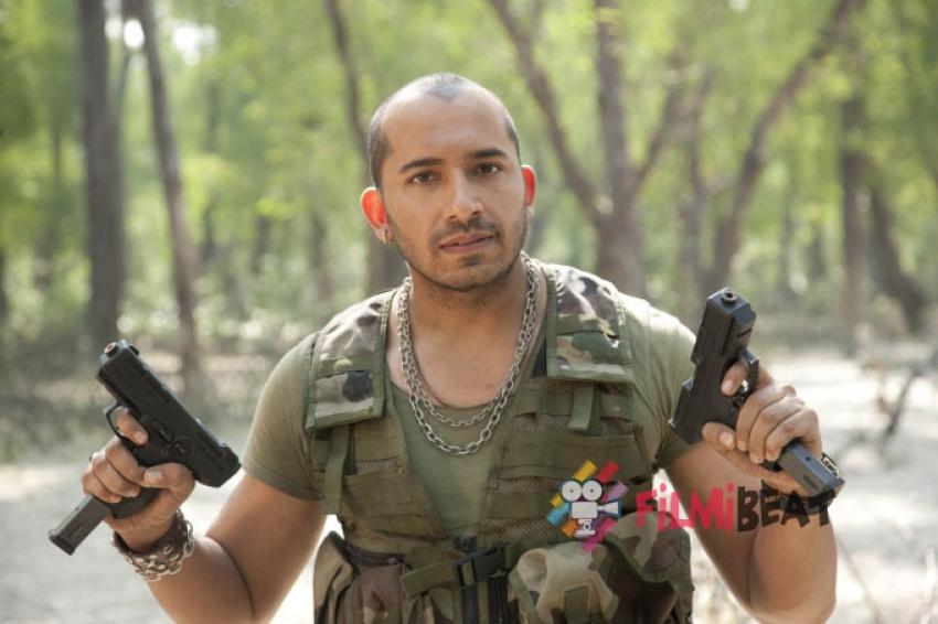 Ali Quli Photos