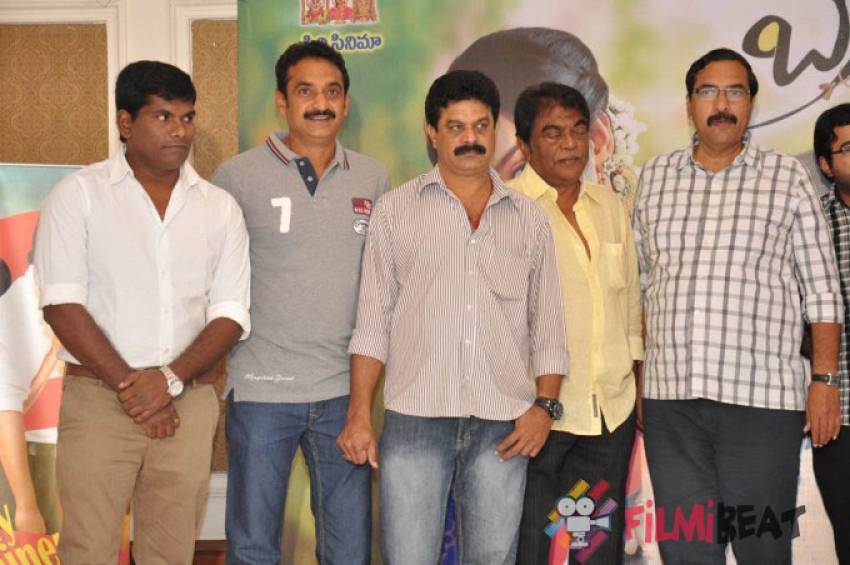 Brother Of Bommali Success Meet Photos