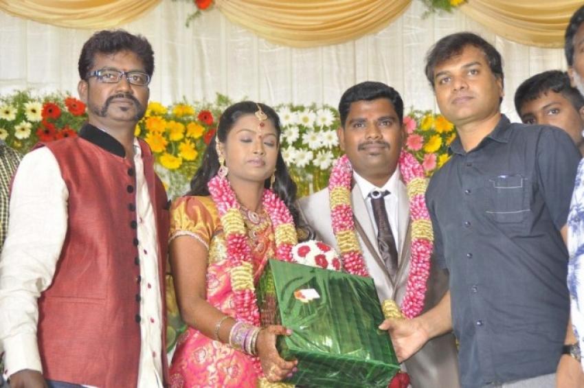 Director Sai Ramani Daughter Wedding Reception Photos