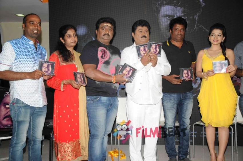 Namo Bhoothathma Film Audio Release Photos