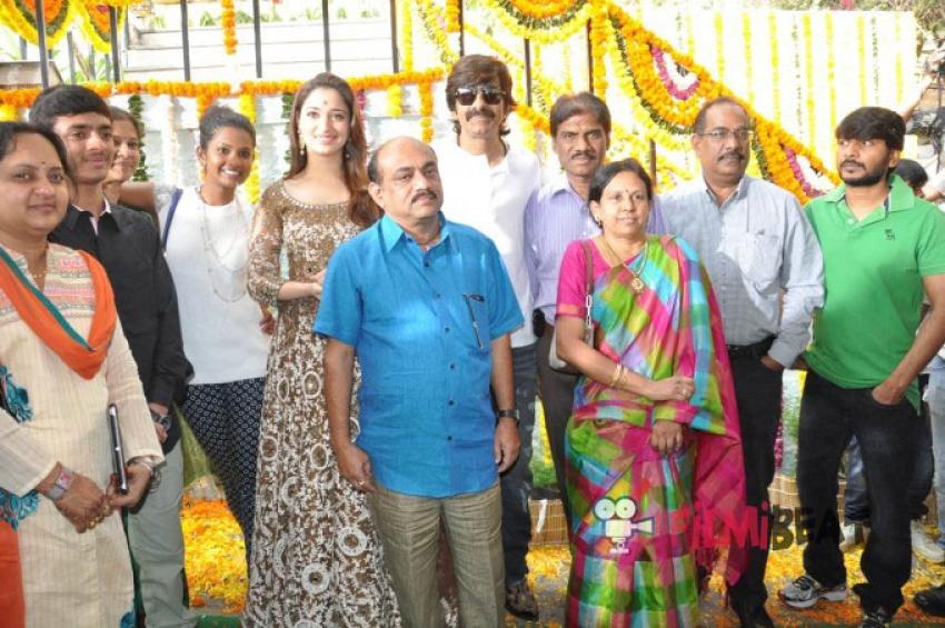 Bengal Tiger Movie Launch Photos