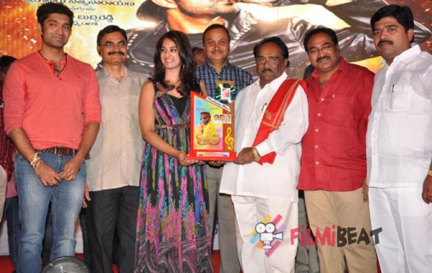 Ram Leela Platinum Disc Function Photos