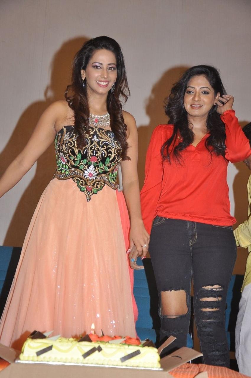 Sanjana Singh Birthday Celebration Photos