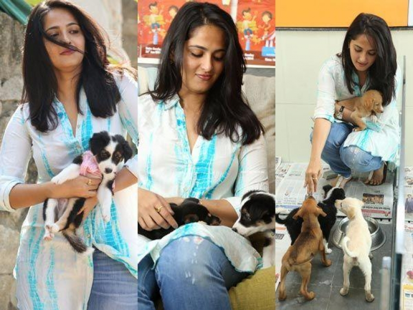 Indian Celebrities With Their Pets Photos