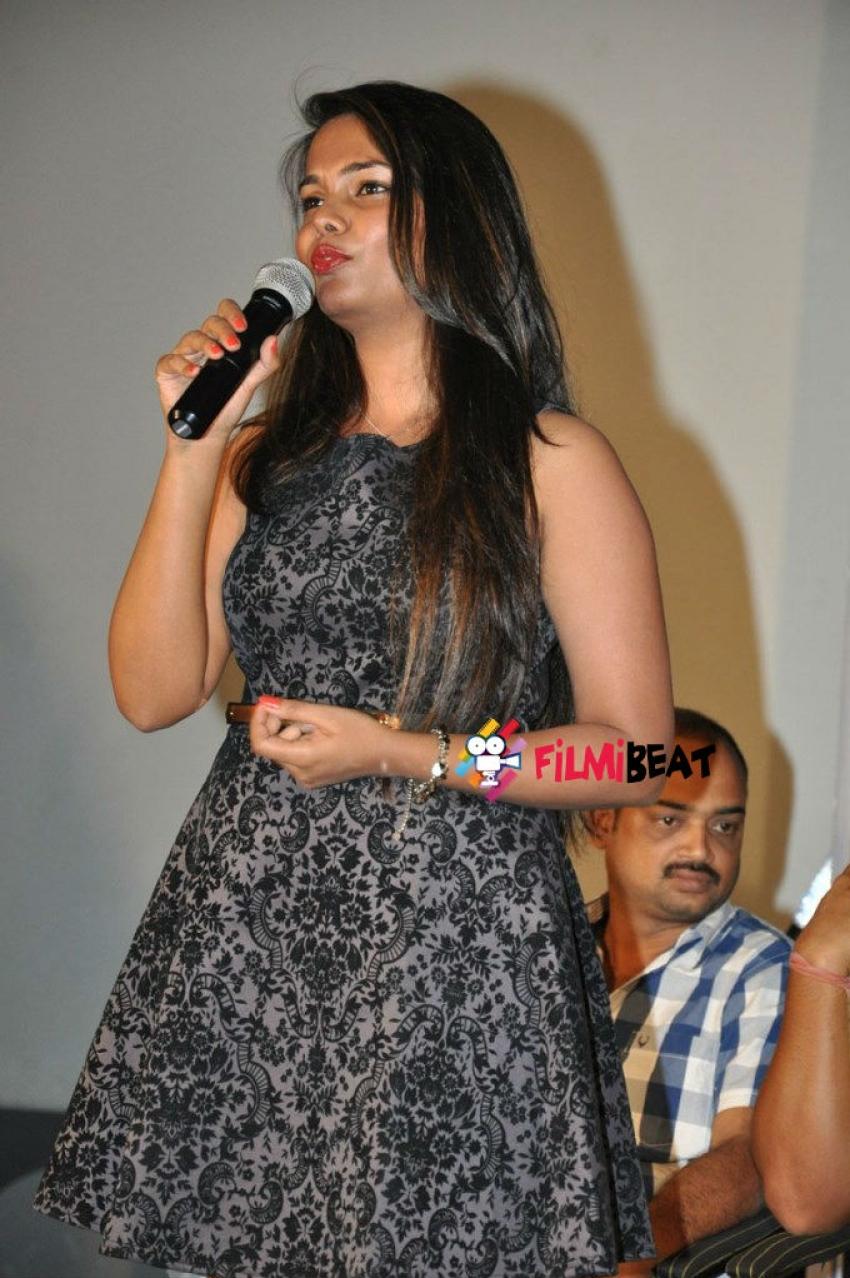 Pramadam Trailer Launch Photos