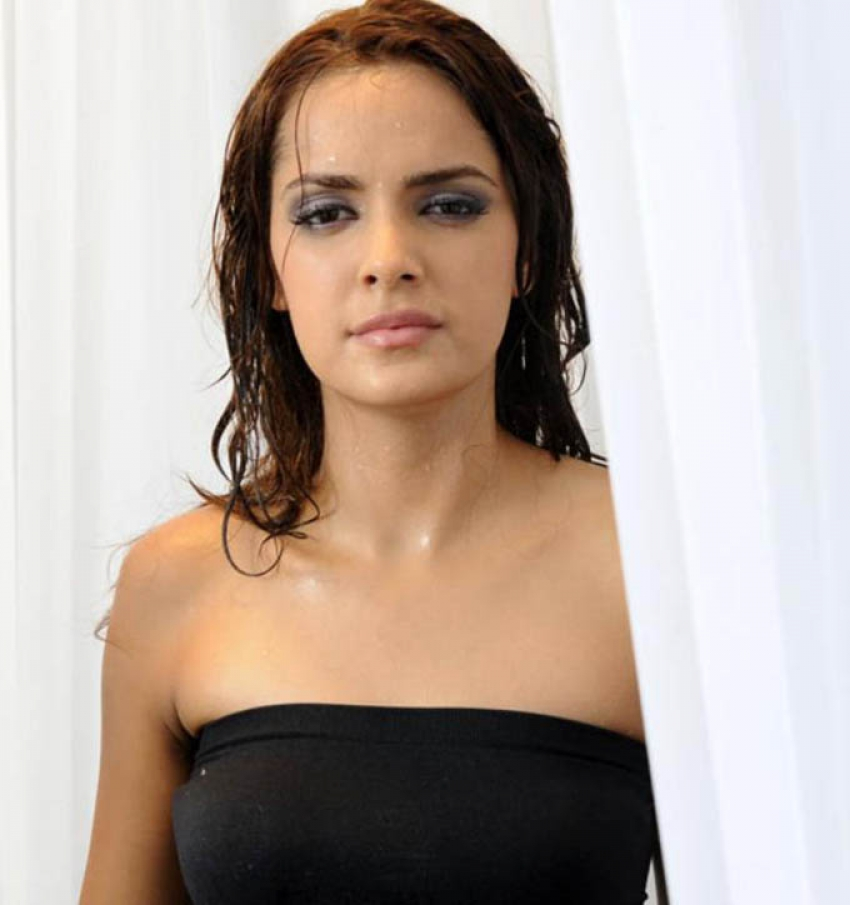 Shazahn Padamsee Photos