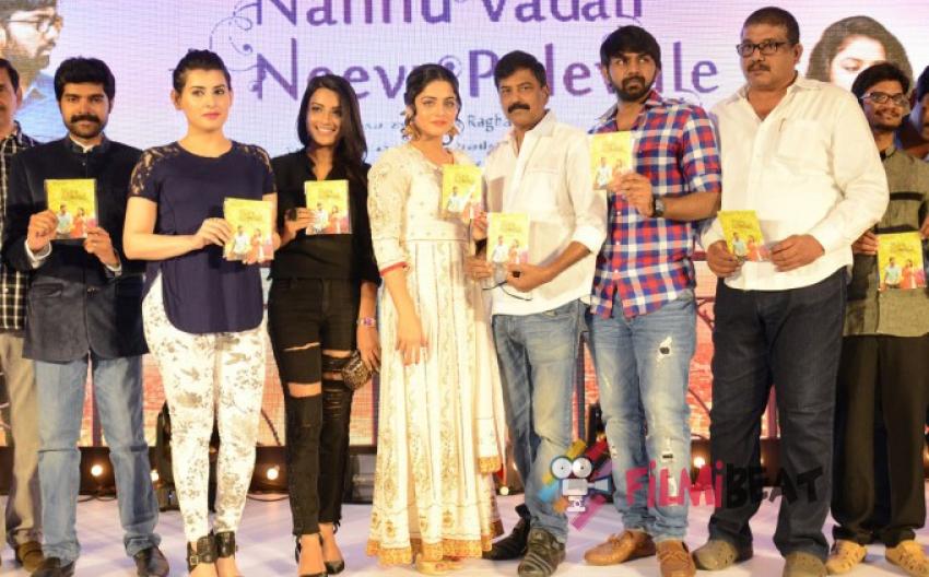 Nannu Vadili Neevu Polevule Audio Launch Photos