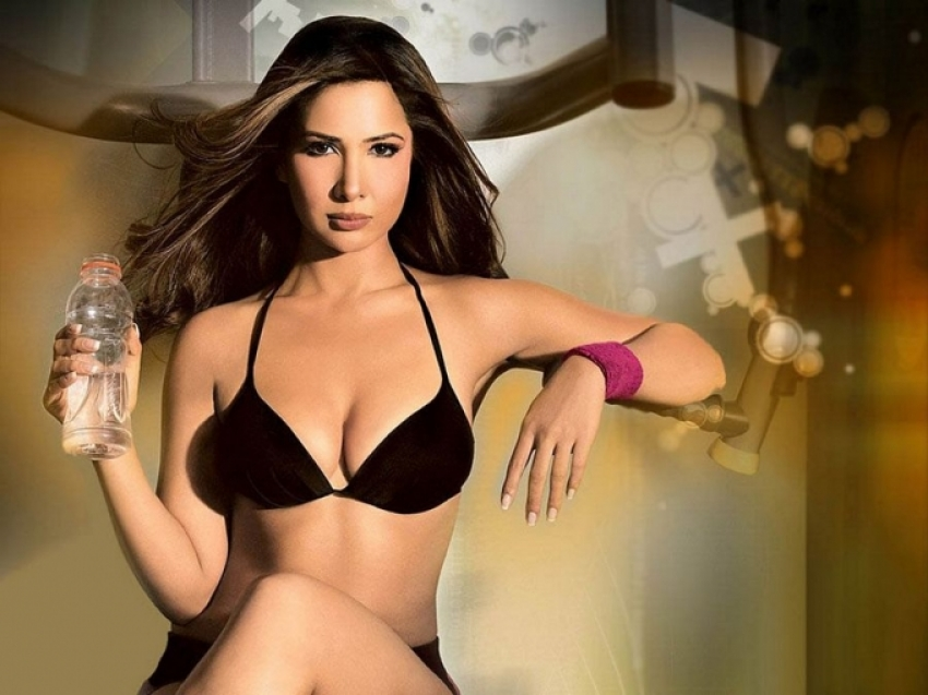 Kim Sharma Hot Pics Photos