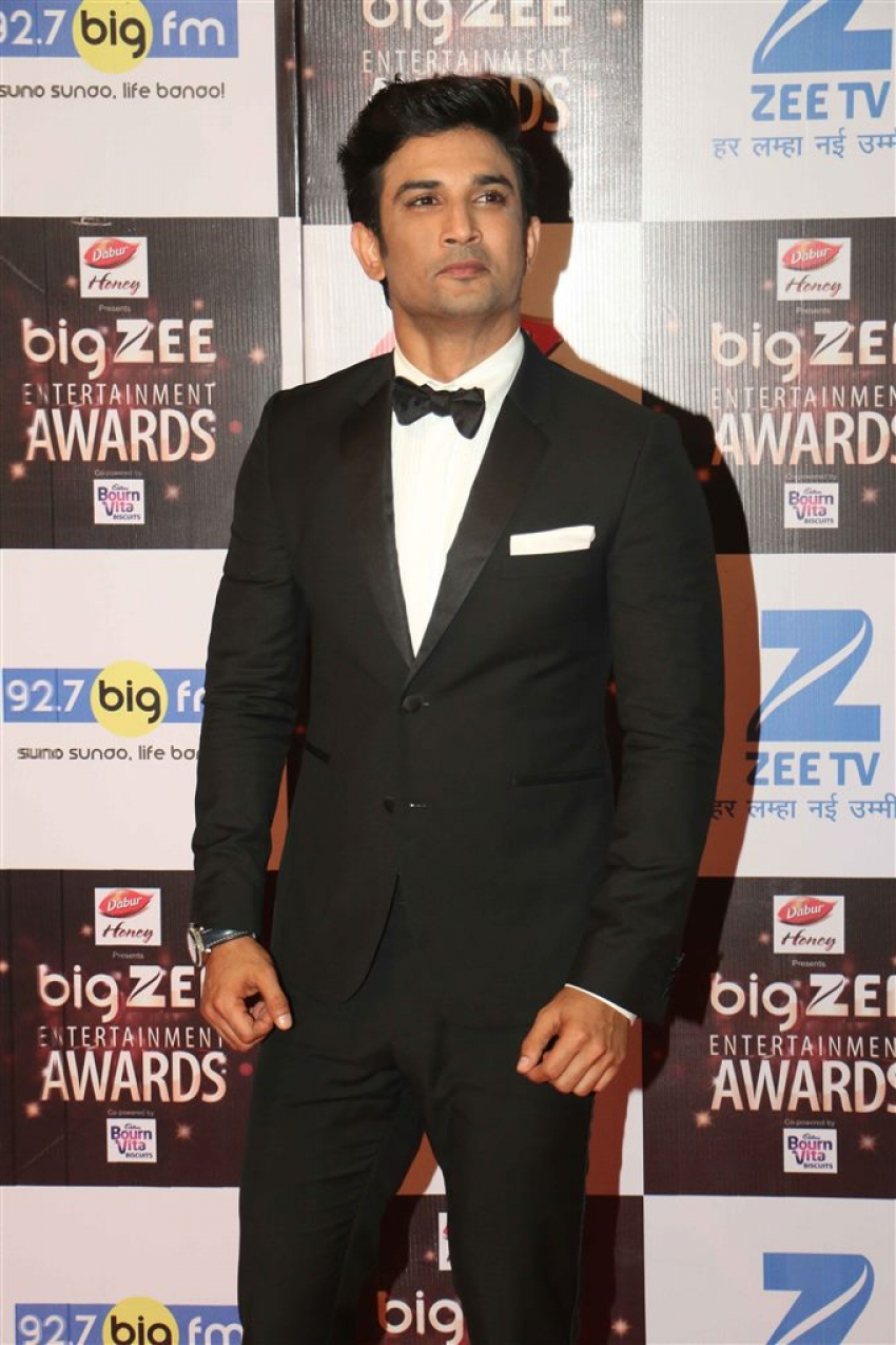 Zee Big Entertainment Awards 2017 Photos