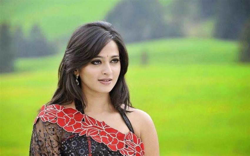 South Indian Actress Photos In Saree Photos Filmibeat
