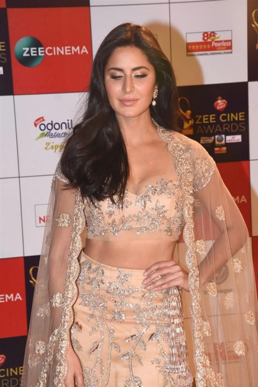 Lux Zee Cine Awards 2017 Photos