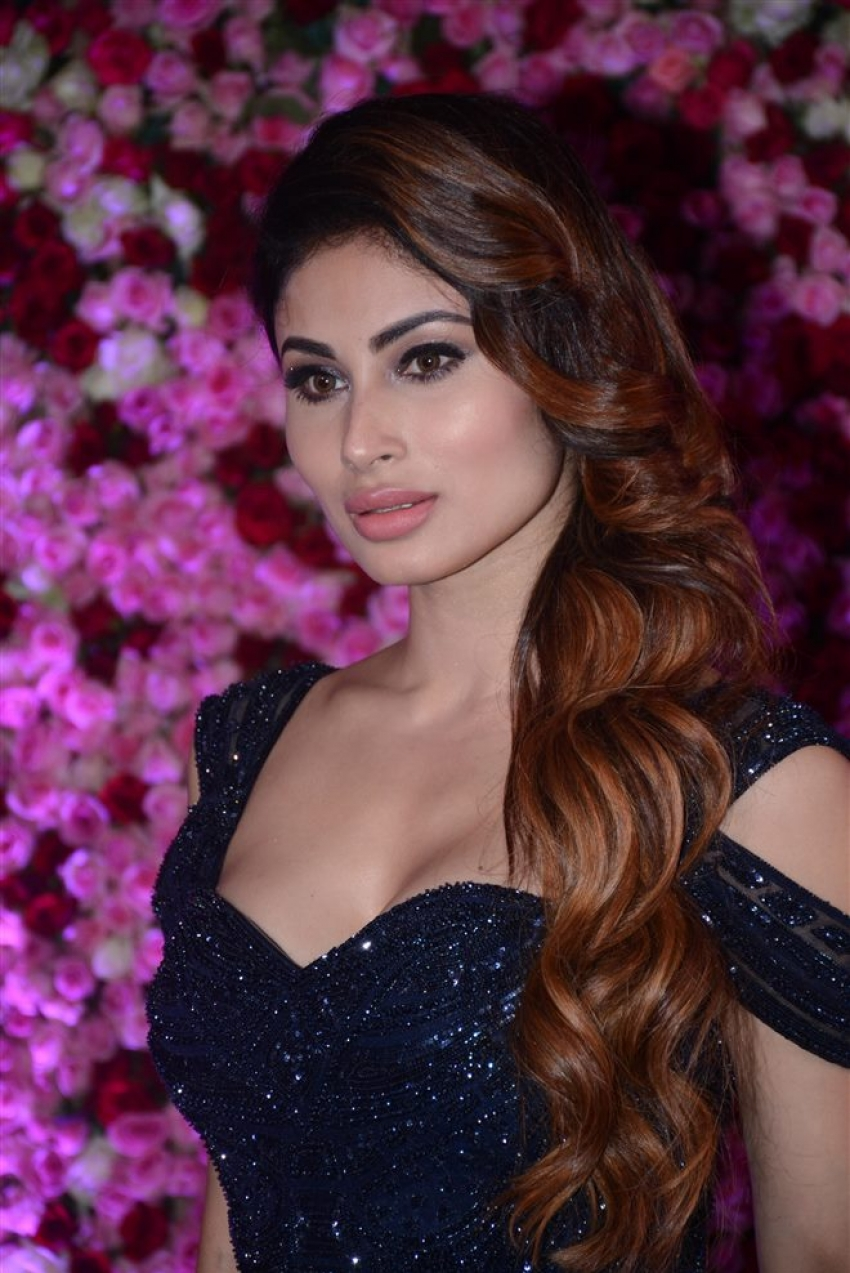 Red Carpet Photos Of Lux Golden Rose Awards 2017 Photos