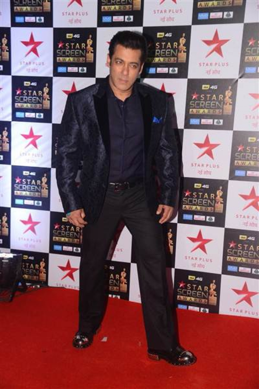 Star Screen Awards 2017 Photos
