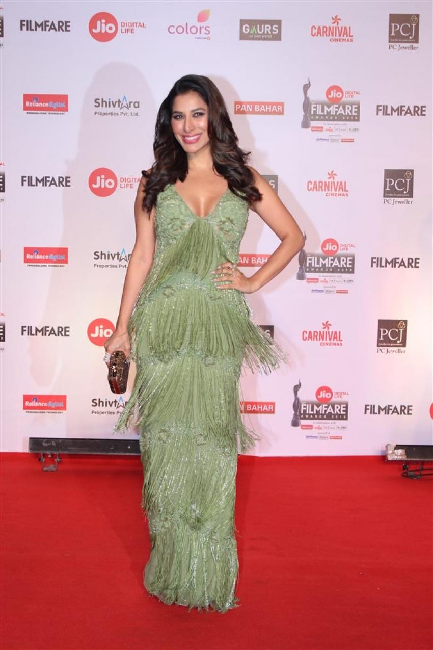 Red Carpet Photos of Jio Filmfare Awards 2018 Photos