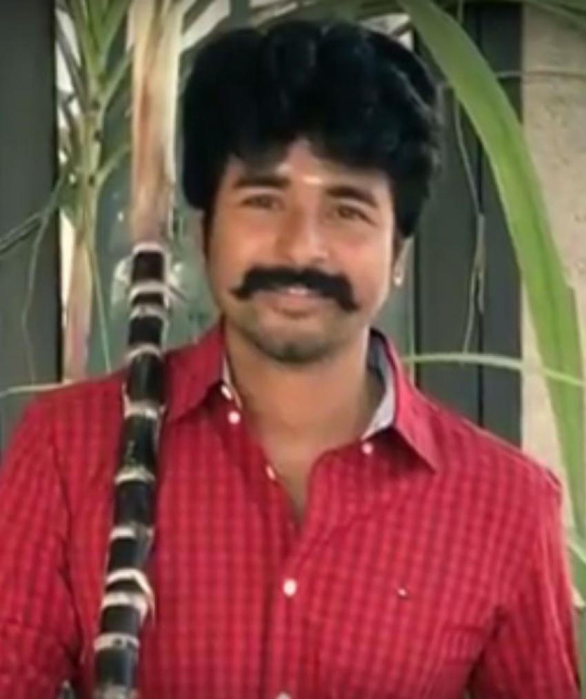 Tamil Actors Celebrating Pongal Photos