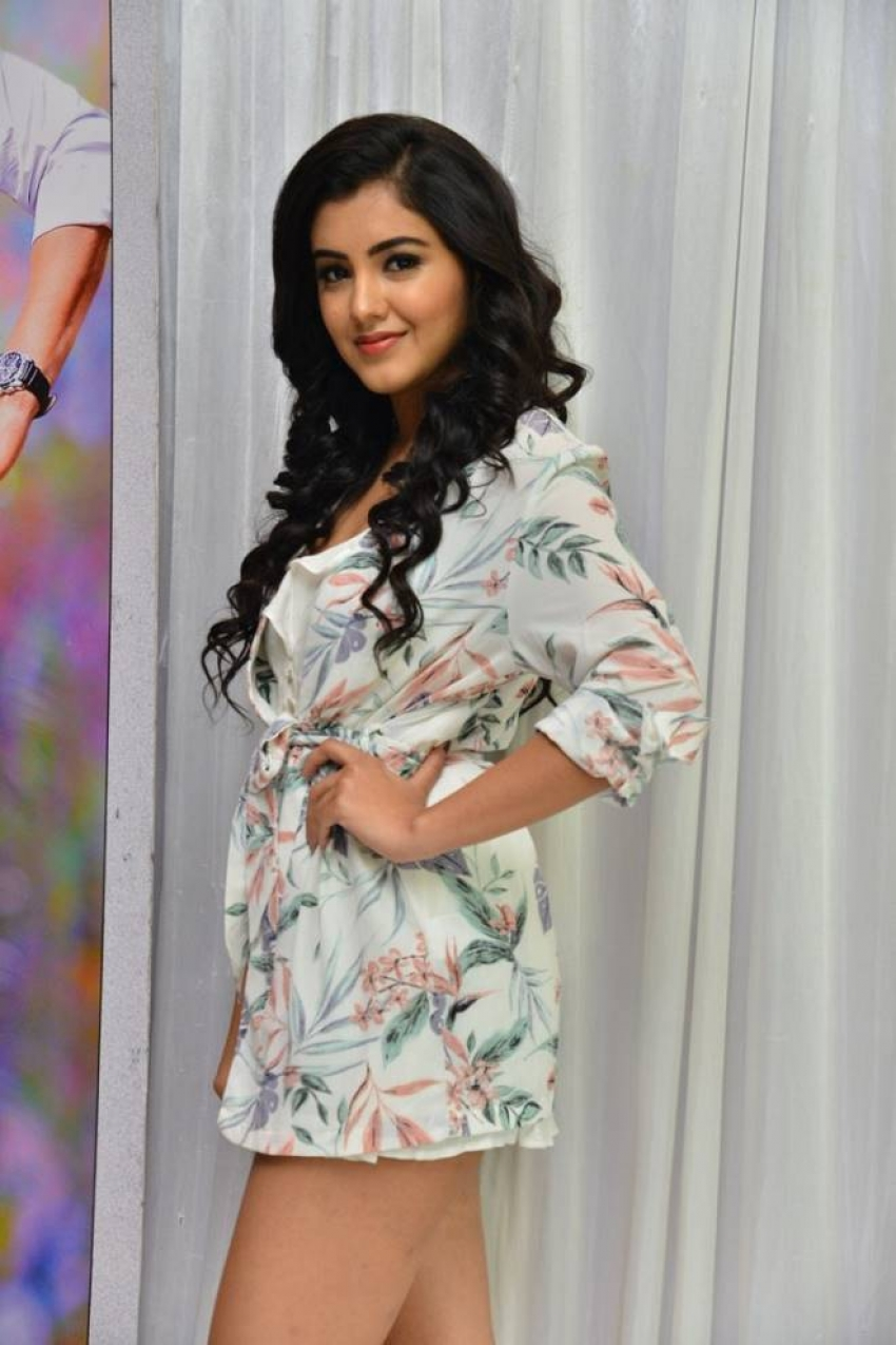Malvika Sharma At Nelaticket Movie Press Meet Photos