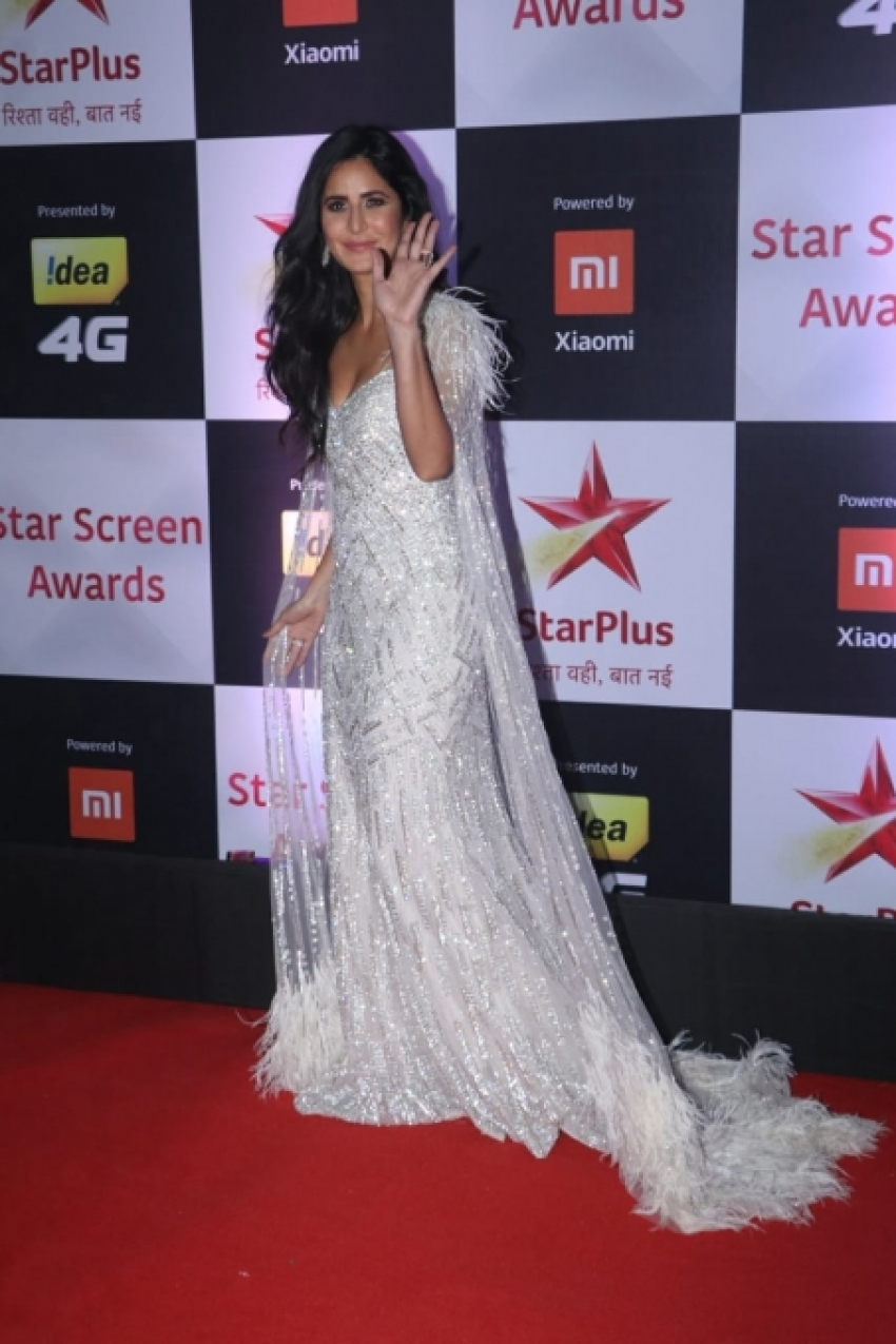 Star Screen Awards 2018 Photos