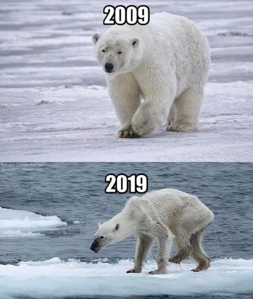 10-Year Challenge Memes Photos
