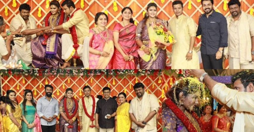 Abinaya Parthiban And Naresh Karthik Wedding Reception Photos