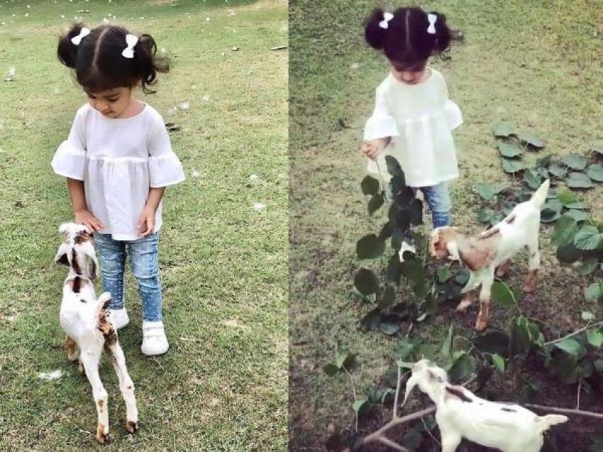 Asin Daughter Arin Unseen Photos