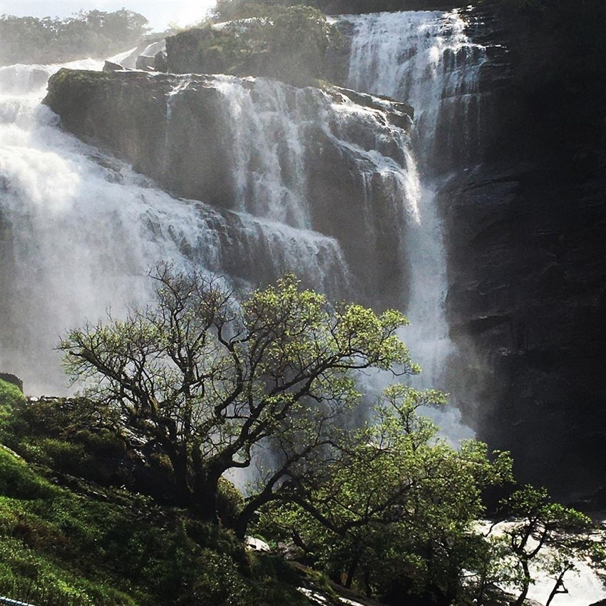 Ragini Dwivedi Enjoying Her Vacation At Mallalli Waterfalls Kodagu Photos