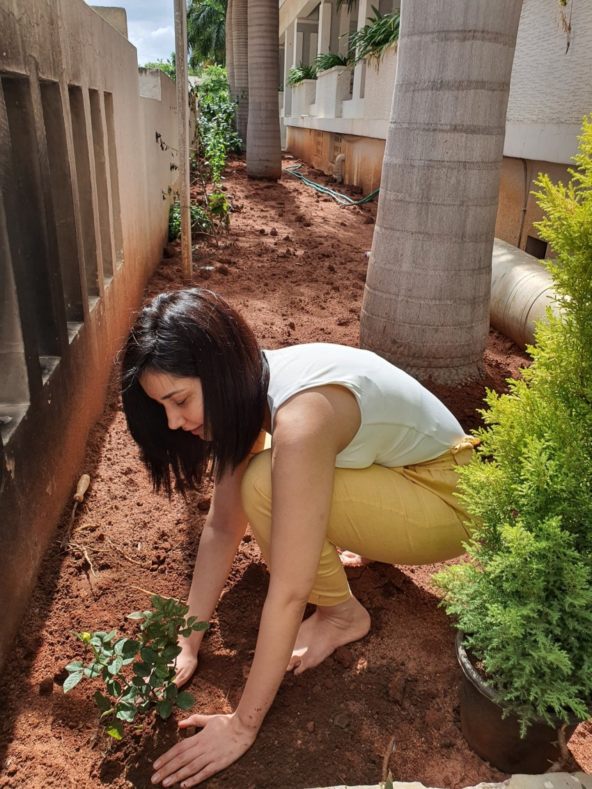 Celebs Green India Challenge 2020 Photos
