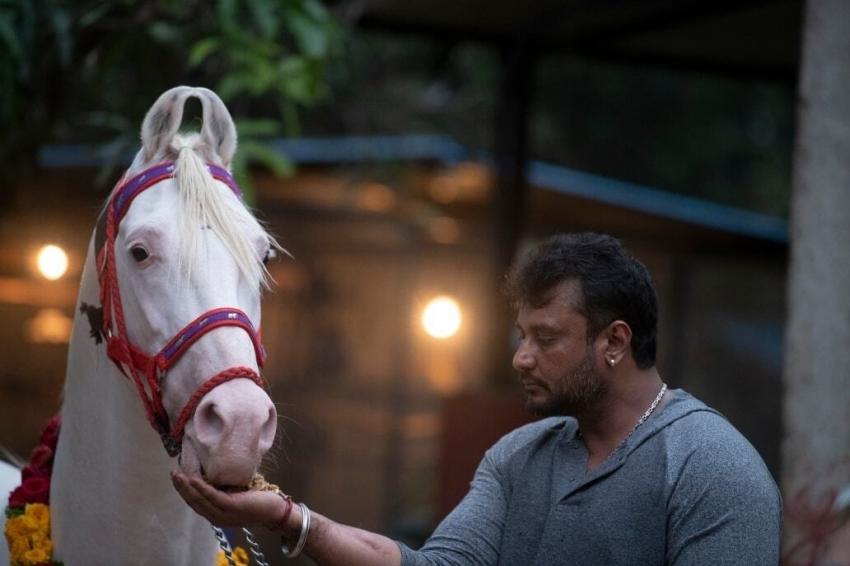 Darshan Celebrates Sankranthi 2021 At His Farm House Photos