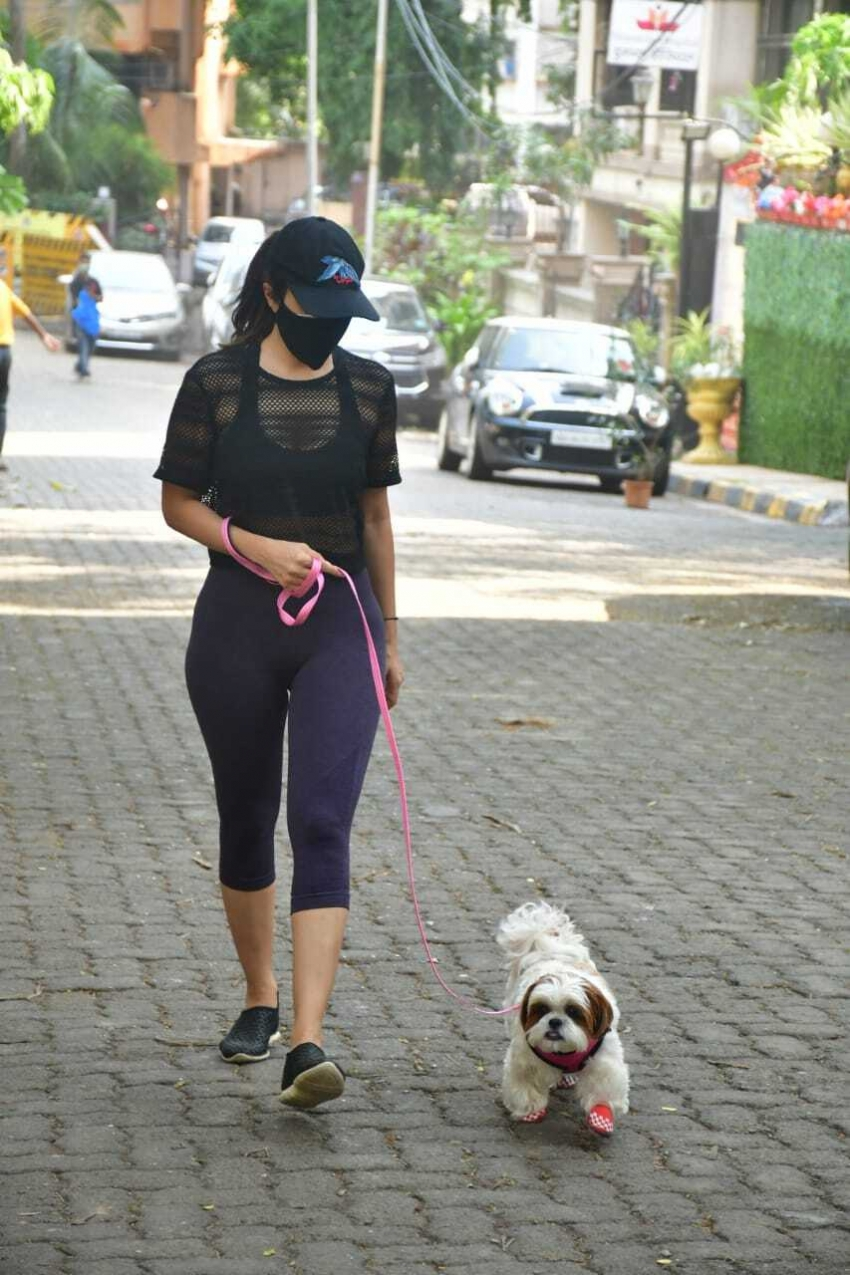 Sophie Choudry and Malaika Arora spotted for walk Photos