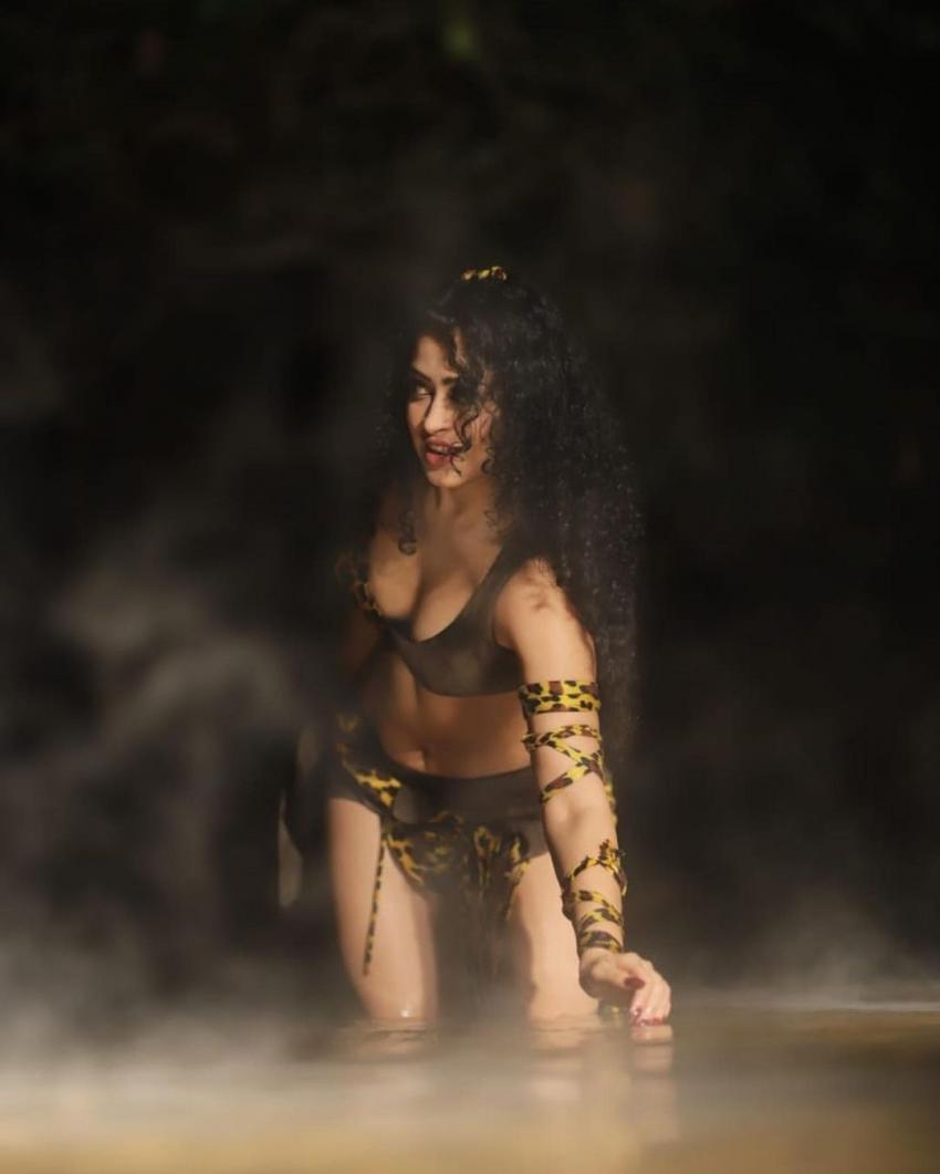 Apsara Rani Photos