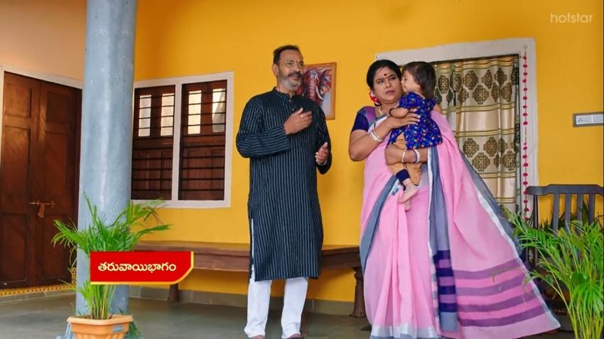 Vadinamma : అమ్మో పార్వతి..రౌడీ సాయంతో వైదేహి కిడ్నాప్.. ఊపిరి ఆడకుండా?