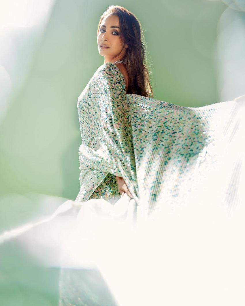 मलाइका अरोड़ा की इन तस्वीरों पर प्यार लुटा रहे हैं  फैंस।
