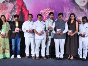 Anaganaga O Rajakumarudu Movie Audio Launch