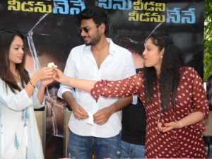 Ninu Veedani Needanu Nene Success Celebrations