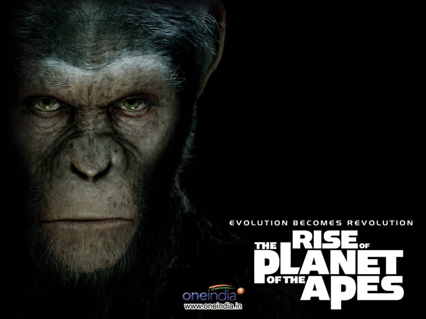 Rise Of The Planet Of The Apes Wallpapers
